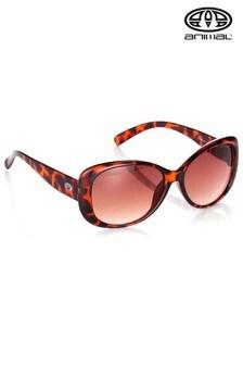 Animal Brown Daybreak II Oversized Sunglasses