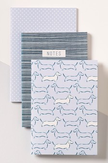 Set of 3 Sausage Dog Notebooks