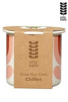 Orla Kiely Grow Your Own Chillies Kit