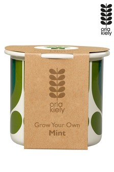 Orla Kiely Grow Your Own Mint Kit
