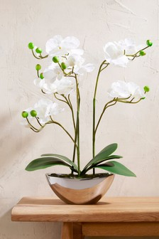 Artificial Real Touch Orchid In Pot