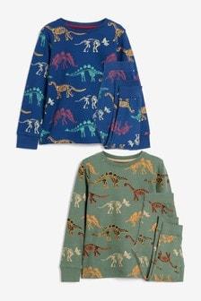 2 Pack Pyjamas (9mths-12yrs)