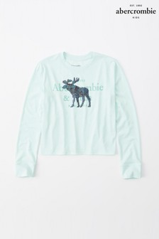 Abercrombie & Fitch Mint Xmas Moose Hoody