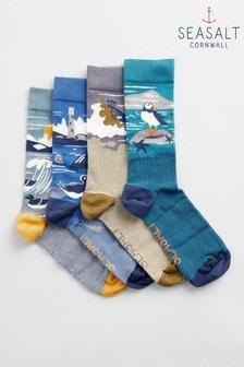 Seasalt Multi Postcard Socks Box Of Four