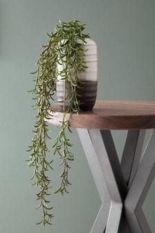 人造蔓性植物和花盆