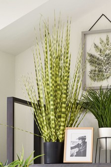 Artificial Zebra Grass Plant