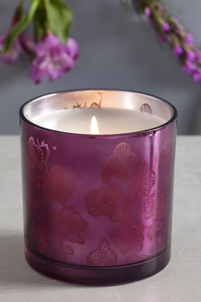 Dark Orchid & Patchouli Waxfill Candle
