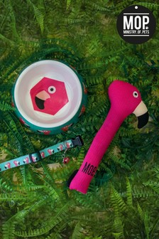 Ministry Of Pets Flamingo Dog Accessories Bundle