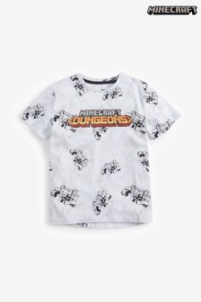 Minecraft Dungeons Graphic T-Shirt (4-14yrs)