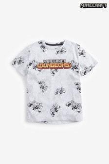 Minecraft Dungeons Graphic T-Shirt (4-14yrs)