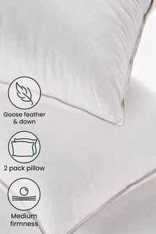 Medium Set Of 2 Pillows