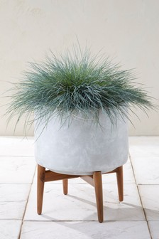 Cement Style Wide Planter