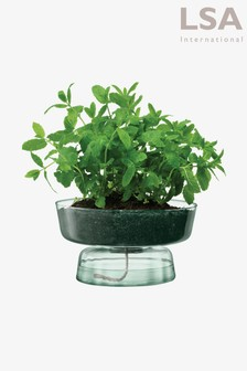 LSA International Canopy Self Watering Recycled Planter