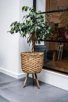 Ivyline Water Hyacinth Lined Basket