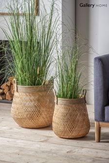 Set of 2 Gallery Direct Rodi Bamboo Baskets