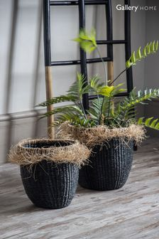 Set of 2 Gallery Direct Lolito Black Baskets