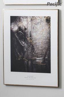 Pacific Mono Elephant Print With Black Frame