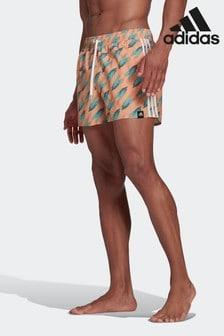 adidas Graphic Swim Shorts