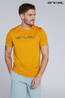 Animal Mens Strive Recycled Active T-Shirt