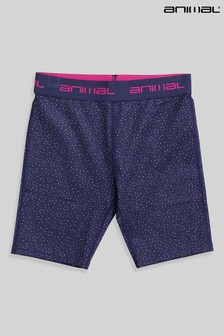 Animal Girls Blue Roadtrip Recycled Cycling Shorts