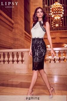 Monochromatyczna koronkowa sukienka midi Lipsy VIP Petite