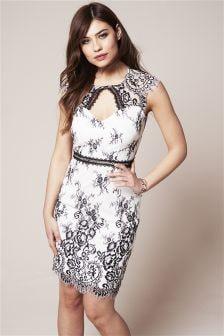 Two Tone Lace Bodycon Dress