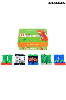 Cucamelon 'D Is For Dinosaur' Socks Toddler Gift Box - 5 Pair