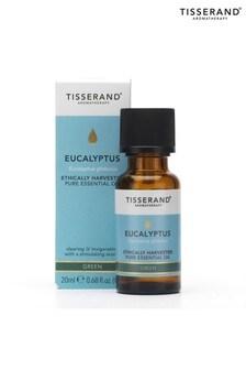 Tisserand Eucalyptus Organic Pure Essential Oil 100ml