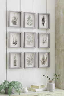 Set of 9 Floating Botanical Framed Art