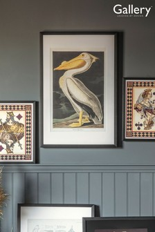 Large Pelican Framed Wall Art by Gallery Direct