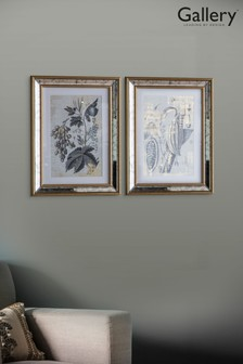Set of 2 Mirrored Floral Studies Framed Wall Art by Gallery Direct