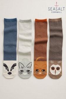 Seasalt Cornwall Brown Sailor Socks Box Of 4