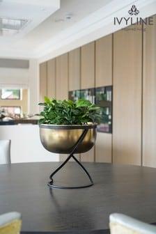 Ivyline Indoor Kensington Round Planter