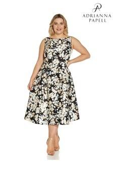 Adrianna Papell Plus Black Floral Mikado Dress