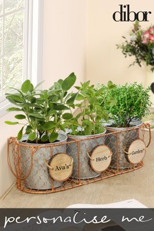 Personalised Set of 3 Herb Pots by Dibor