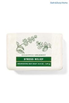Bath & Body Works Eucalyptus Spearmint Nourishing Bar Soap 249g