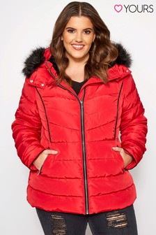 Yours Curve Hooded PU Trim Panel Padded Jacket