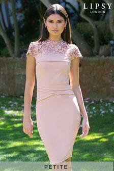 Lipsy Petite Lace Detail Bodycon Dress