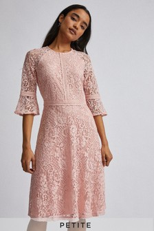 Dorothy Perkins Petite 3/4 Sleeves Tilly Lace Dress