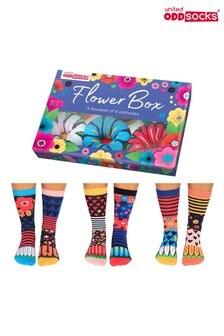 United Odd Socks Flowerbox Socks