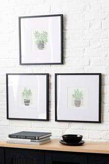 Set van 3 ingelijste botanische prints