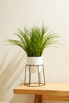 Artificial Grass In Plant Stand