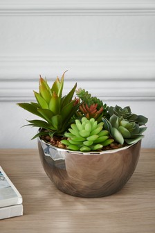 Artificial Succulents in Silver Bowl
