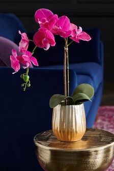 Artificial Orchid in Ceramic Pot
