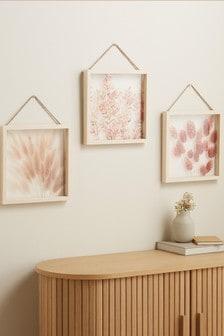 Set of 3 Dried Botanical Hanging Frames