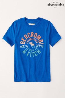 Abercrombie & Fitch Blue Rainbow Logo T-Shirt