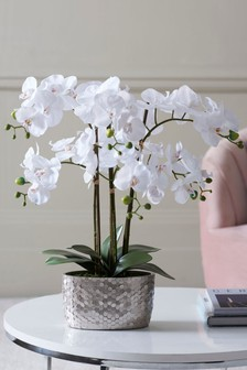 Sztuczna orchidea w donicy