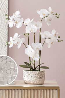 Artificial Orchid In Silver Pot (266756) | $43