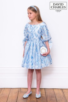 David Charles Blue Metallic Organza Party Dress