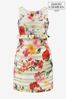 David Charles Gold Stripe Brocade Floral Party Dress